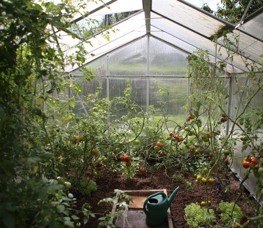greenhouse-cutegardening.com
